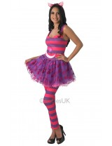 Cheshire Cat Costume Alice in Wonderland Costume