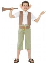 Boys Roald Dahl BFG Costume
