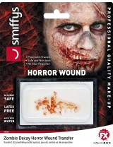 Horror Wound Transfer Zombie Decay