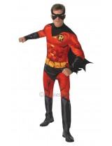 Comic Book Robin Costume