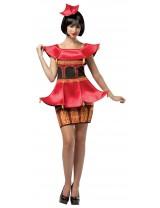 Pagoda Dress Costume